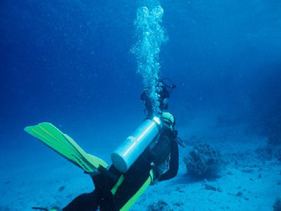 Scuba Diving Tank Dive For Certified Divers 1 Day